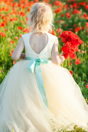 girl model, fashion, summer nature concept - young blonde girl picking a bouquet of poppy flowers on the field, on the back of her white wedding dresses a great neckline and a delicate blue belt