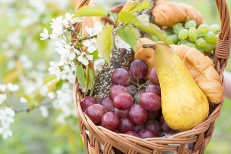 healthy life, nature, treatment concept. close up of gorgeous basket for a picnic that is full of appetizing fruits such as big yellow pear and variety of grape, they are placed by bakery goods