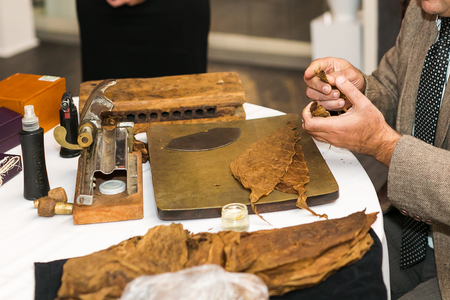 Process of making traditional cigars from tobacco leaves using a mechanical device and press. Leaves of tobacco for making cigars.