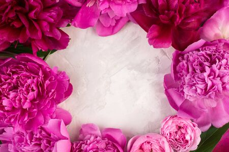 Frame wreath of pink peony flowers, roses, leaves and petals with space for text on white background. Flat lay, top view. Peony flower texture. feminine background.