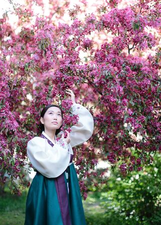 elegant korean woman dressed in national dress - hanbok. young asian girl standing in the garden in the shadow of flowering apple tree Imagens