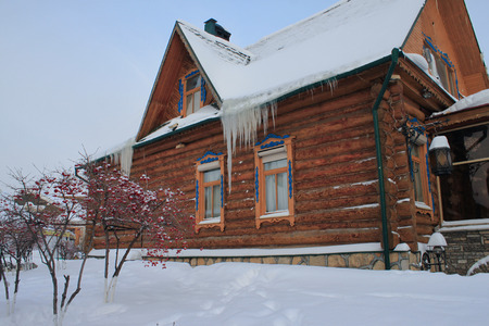 Classic rural wooden house in the snow. Cloudy winter day. Viburnum bushes at the left. Big icicles on the roof.