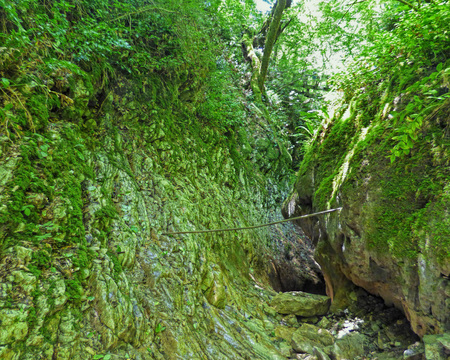 Small canyon between aged rocks. Narrow pass in the forest. Moss on the stones, green plants around. Sunny summer day.