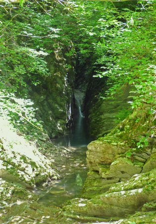 Small waterfall far in the dark canyon.  Moss on the stones, green plants around. Sunny summer day.
