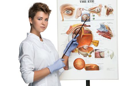 oculist: Optician or oculist woman  tells about the structure of the eye. White background. Poster Device eyes