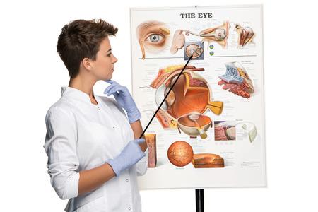 oculista: Mujer �ptica u oculista diciendo acerca de la estructura del ojo. Fondo blanco. Ojos cartel de dispositivo Foto de archivo