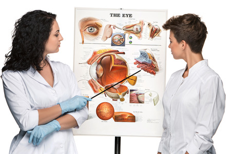 oculist: two optician or oculist women telling about the structure of the eye. White background. Poster Device eyes