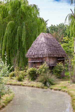 a small hut with a thatched roof. Africa photo