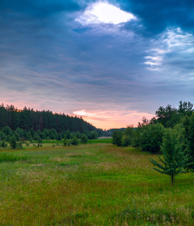 dappled: Glade green wood and blue sky with clouds. Ukraine