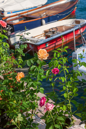 view through: roses on the pier. view through flowers on a boat Stock Photo
