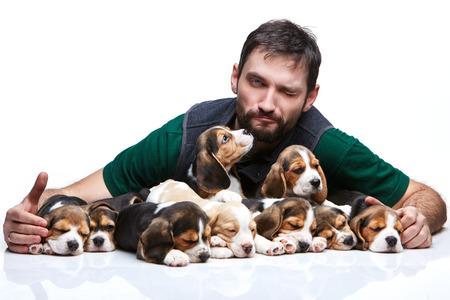 amigos abrazandose: El hombre gui�o y un grupo grande de un cachorros beagle en el fondo blanco