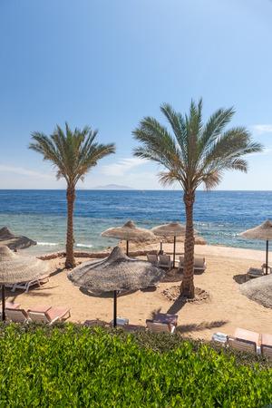 sharm: The beach at Sharm el Sheikh, Egypt