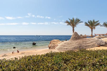 el sheikh: The beach at Sharm el Sheikh, Egypt