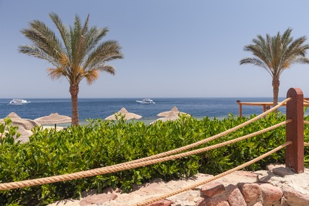sharm: The beach in Sharm el Sheikh, Egypt