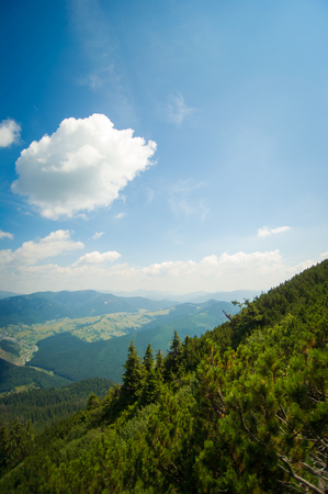 green meadows: Beautiful green meadows  on Carpathian mountains in Ukraine Stock Photo