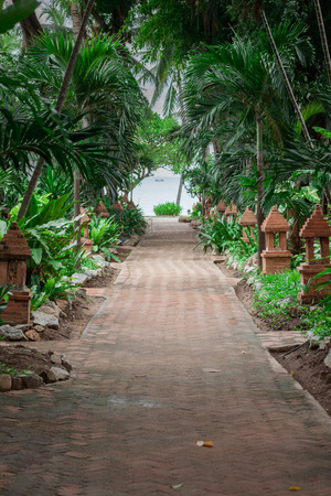 garden of eden: A tropical garden with palm trees overlooking the sea with blue sky Stock Photo