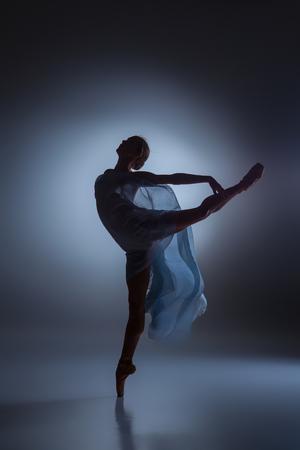 ベールと暗い青色の背景に踊る美しいバレリーナのシルエット 写真素材