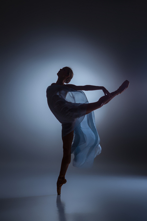 The silhouette of beautiful ballerina dancing with veil on  dark blue background