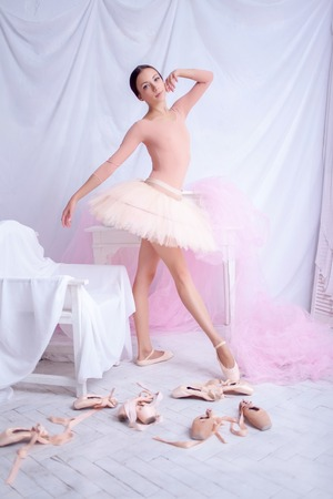 pointes: Professional ballerina posing against the backdrop of pink veil and  pointes Stock Photo
