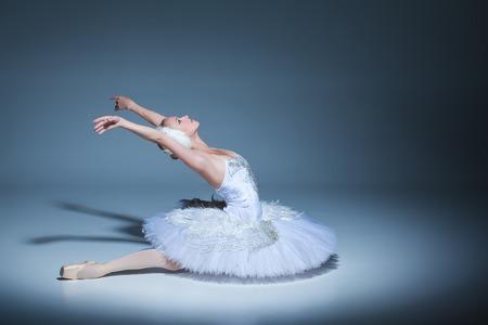 파란색 배경에 흰색 백조의 역할에서 발레리나의 초상화 스톡 콘텐츠
