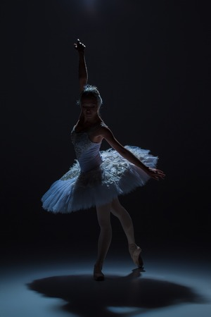 ballerina silhouette: silhouette of the ballerina  in the role of a white swan on dack background