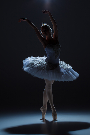 ballerina: silhouette of the ballerina  in the role of a white swan on dack background