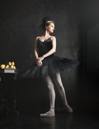 animal tutu: Portrait of the ballerina  in the role of a black swan on back background Stock Photo