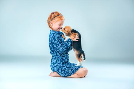 amigos abrazandose: The happy girl and beagle puppie on gray background Foto de archivo