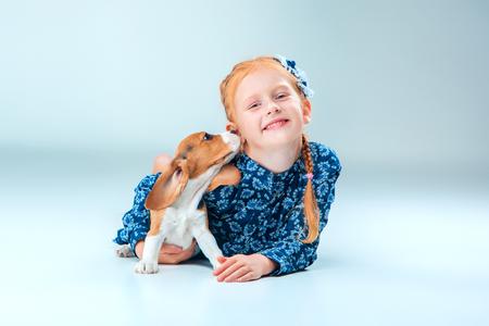 amigos abrazandose: La niña y feliz beagle cachorro sobre fondo gris