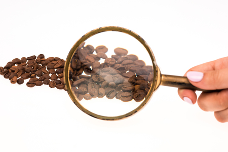 The female hand keepig magnifying glass over the coffee beans