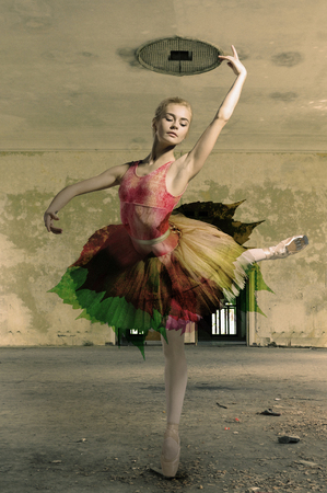 pointe shoes: Portrait of the ballerina in ballet pose on a gray room background. Ballerina is wearing pink tutu and pointe shoes