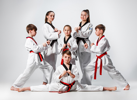 The studio shot of group of kids training karate martial arts Stock Photo - 75332027