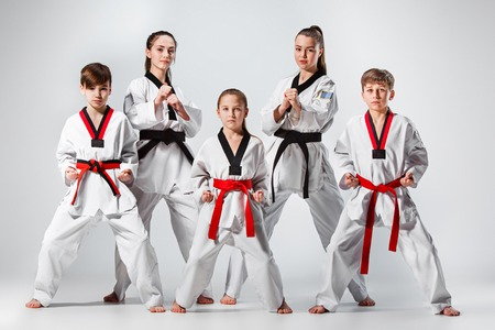 The studio shot of group of kids training karate martial arts Zdjęcie Seryjne
