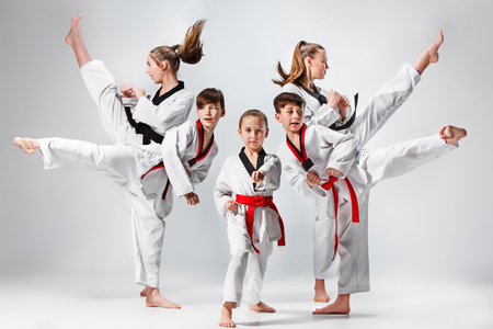 El tiro del estudio del grupo de cabritos que entrenan artes marciales del karate Foto de archivo - 75332039