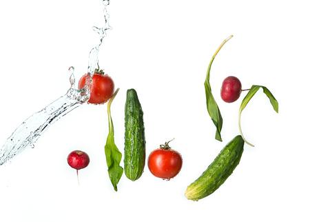 The fresh tomatos, cucumbers, radish in spray of water.