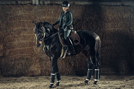 Image of happy female sitting on purebred horse Standard-Bild