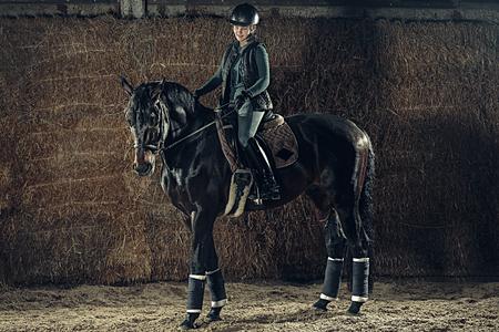 Image of happy female sitting on purebred horse Foto de archivo