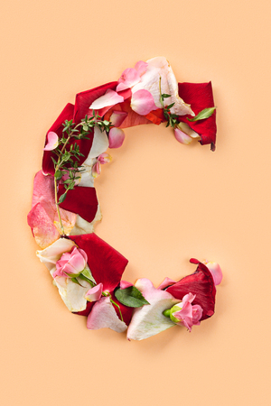 Letter C made from red roses and petals isolated on a white background 版權商用圖片