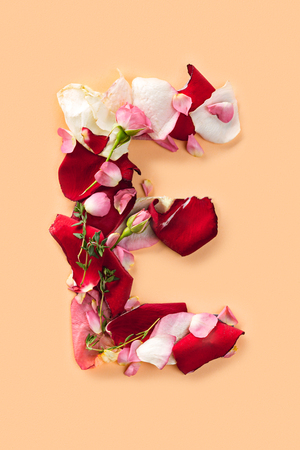 Letter E made from red roses and petals isolated on a white background