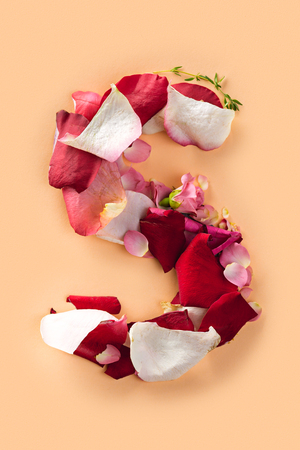 Letter S made from red roses and petals isolated on a white background