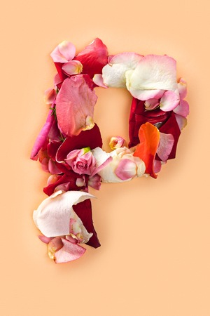 Letter P made from red roses and petals isolated on a white background