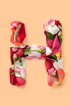 Letter H made from red roses and petals isolated on a white background Archivio Fotografico