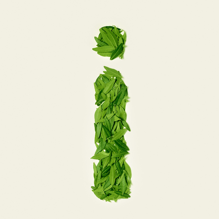 The green dry tea leaf, letter I on white background, top view