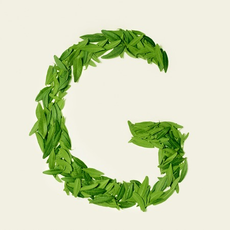 The green dry tea leaf, letter G on white background, top view