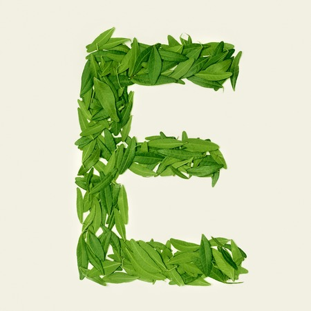 The green dry tea leaf, letter E on white background, top view