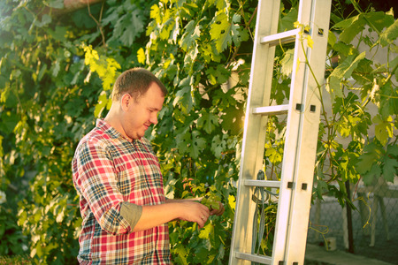 Man work on a family farm Banco de Imagens