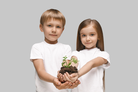 Kids hands with seedlings on studio background. Spring, plant, nature, growing and care concept. Caucasian little girl and boy Stock Photo - 107133782