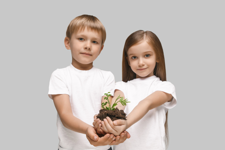 Kids hands with seedlings on studio background. Spring, plant, nature, growing and care concept. Caucasian little girl and boy Stock Photo - 107133784