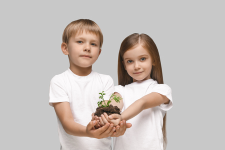 Kids hands with seedlings on studio background. Spring, plant, nature, growing and care concept. Caucasian little girl and boy Stock Photo - 107133783