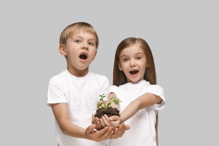 Kids hands with seedlings on studio background. Spring, plant, nature, growing and care concept. Caucasian little girl and boy Stock Photo - 107245240